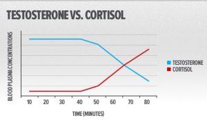 quando aumenta il cortisolo cala la produzione di testosterone