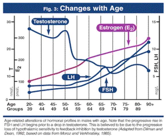 grafico che mostra come il testosterone si abbassa nell'uomo con l'età