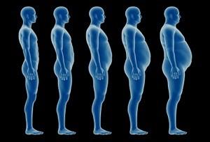 sintomi testosterone basso-aumentare grasso